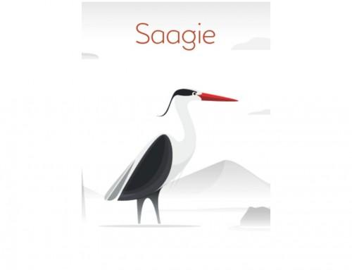 SAAGIE – Soirée d'entreprise 11/16